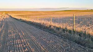 Finca agrícola con casa de campo en Badajoz