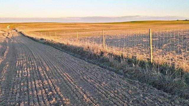 Finca agrícola de 40 ha con casa de campo en Badajoz