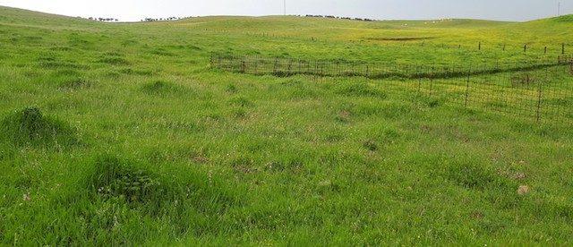 finca agrícola y ganadera con explotación de cerdos en extremadura