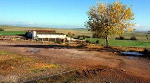 Finca con explotación porcina de cerdas ibéricas en Extremadura
