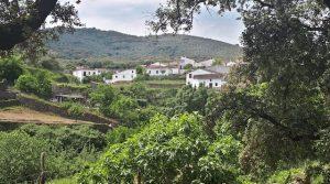 Finca rústica de encinas con pozo legalizado en la sierra de Aracena