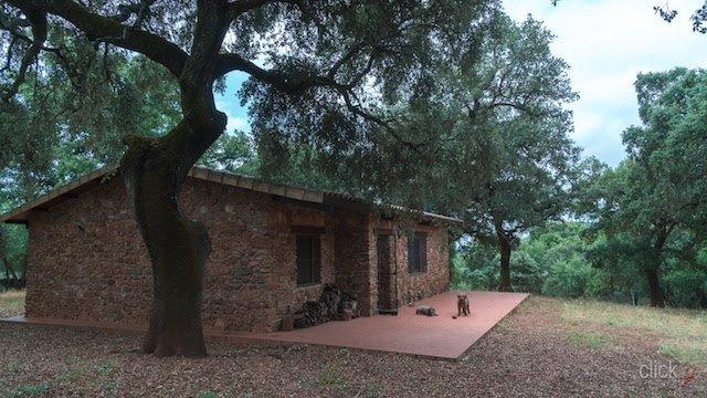 Finca con casa rústica de piedra en la sierra de aracena