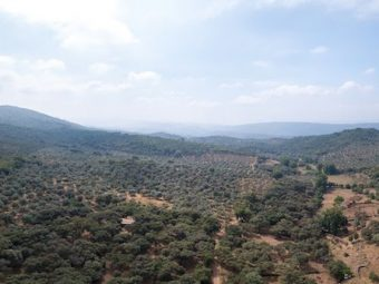 Vista cenital de la finca en la sierra de aracena
