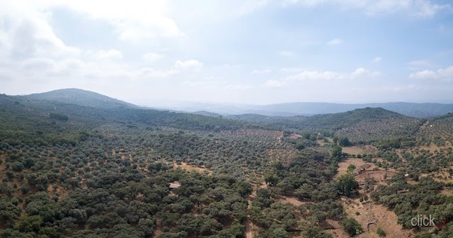 Panorámica del Parque Natural Sierra de Aracena y Picos de Aroche