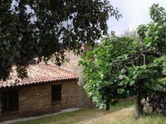 Terreno con casa de campo en la Sierra de San Pedro