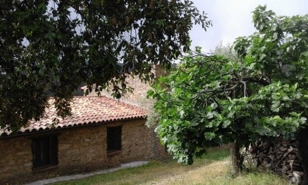 Finca pequeña de 7 ha con arboleda en la Sierra de San Pedro, Cáceres y Badajoz