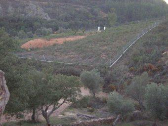 Vista de la parcela con la casa a lo lejos