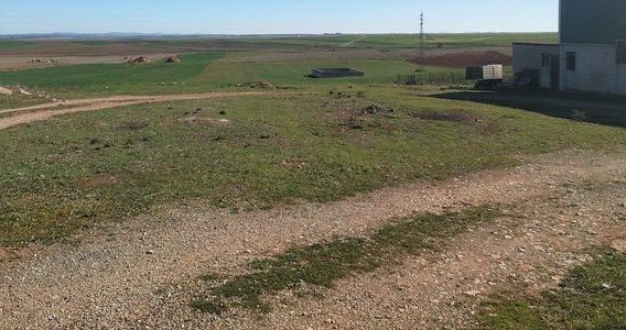 Terreno de 6 ha con granja porcina en el sudeste de Extremadura