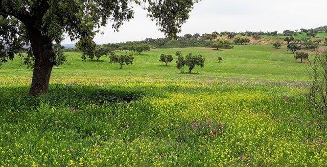 Sierra de Hornachos