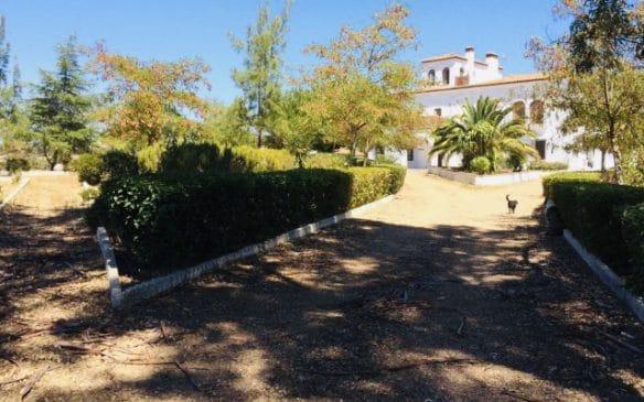 Finca rústica de 1,5 ha próxima a Badajoz para Hotel Rural o segunda residencia