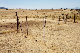 terreno de secano para convertir a regadía