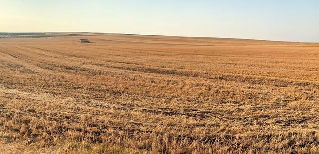 Gran finca agrícola de 465 hectáreas en Portugal con agua de pantano propio