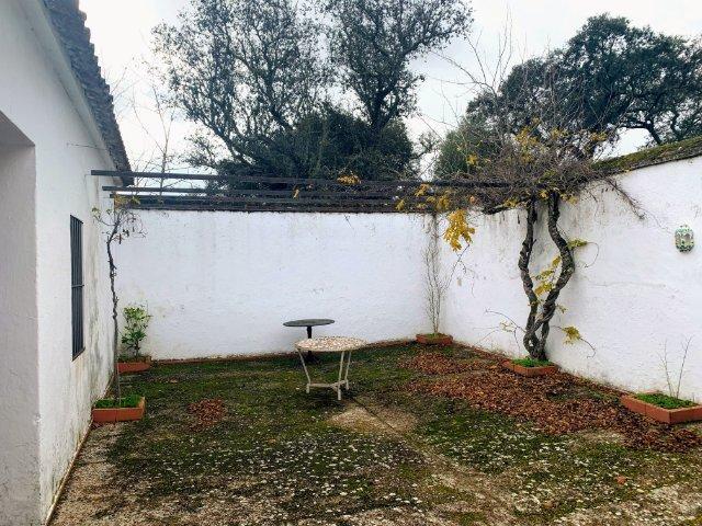 patio-muros