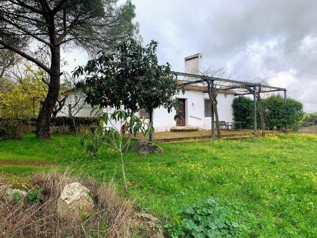 Finca de 7 ha de encinas y labor con antigua casa habitable en el suroeste de Badajoz