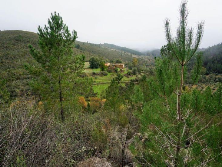 Vista de la sierra de San Pedro