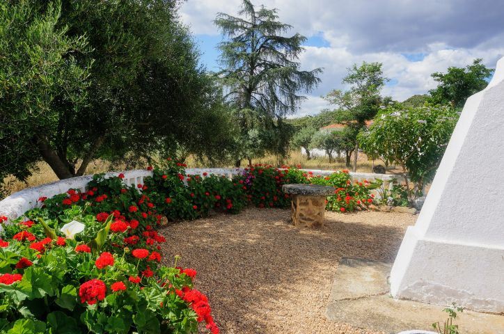 jardin-cortijo