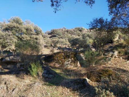 Finca de caza de 800 ha junto al embalse de Valdecañas en Extremadura
