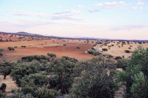 Gran finca rústica agrícola, ganadera, cinegética y de recreo  en Badajoz