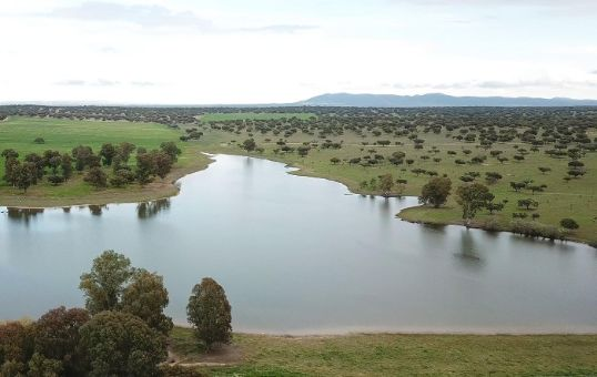 Finca cinegética de 1250 ha en Extremadura