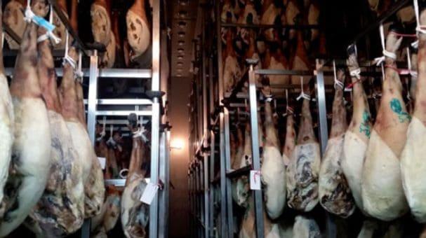 Matadero de cerdos ibéricos en Huelva
