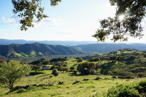 Finca con varias construcciones en la Sierra de Aracena