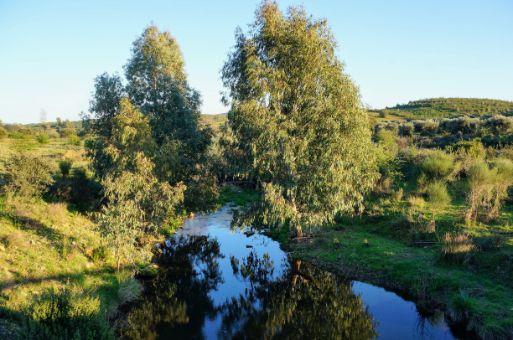 río-jola