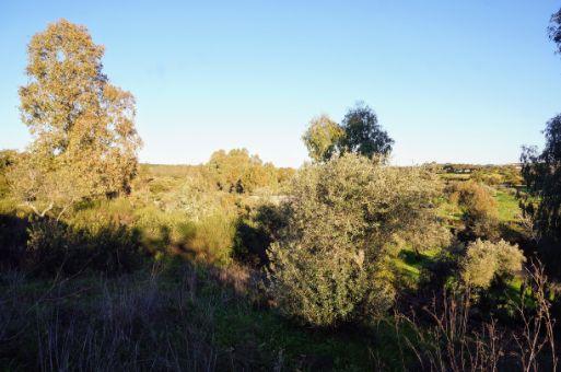 Terreno con amplias vistas